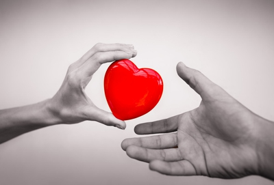 why you should be an organ donor enkimd